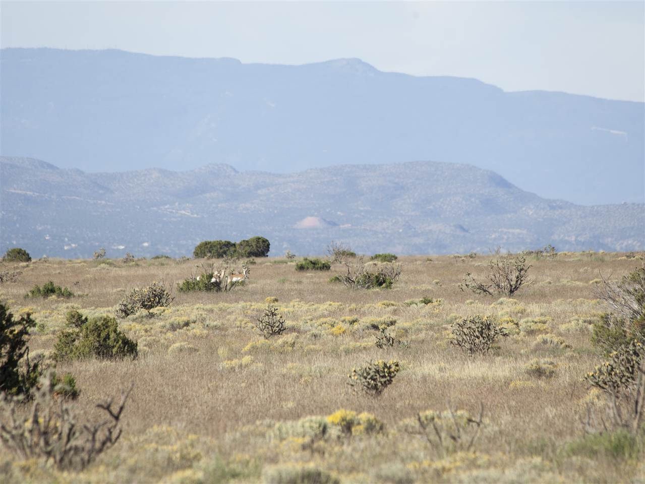 Land for sale on Highway 285 Santa Fe, New Mexico