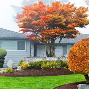 Fall House Image